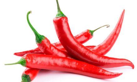 Pimenta Vermelha e os seus benefícios