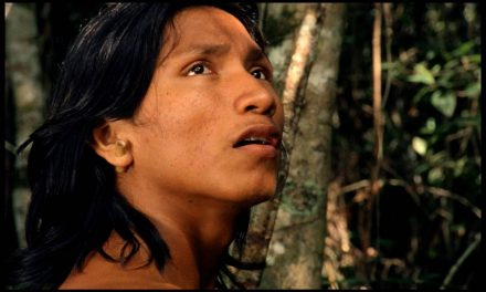 Embaúba Libera Filmes na Internet