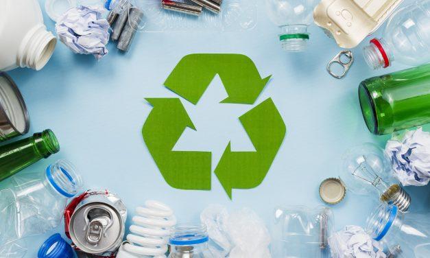 Encontro Lixo Zero São Paulo 2020 – Lixo, sintoma de quê?