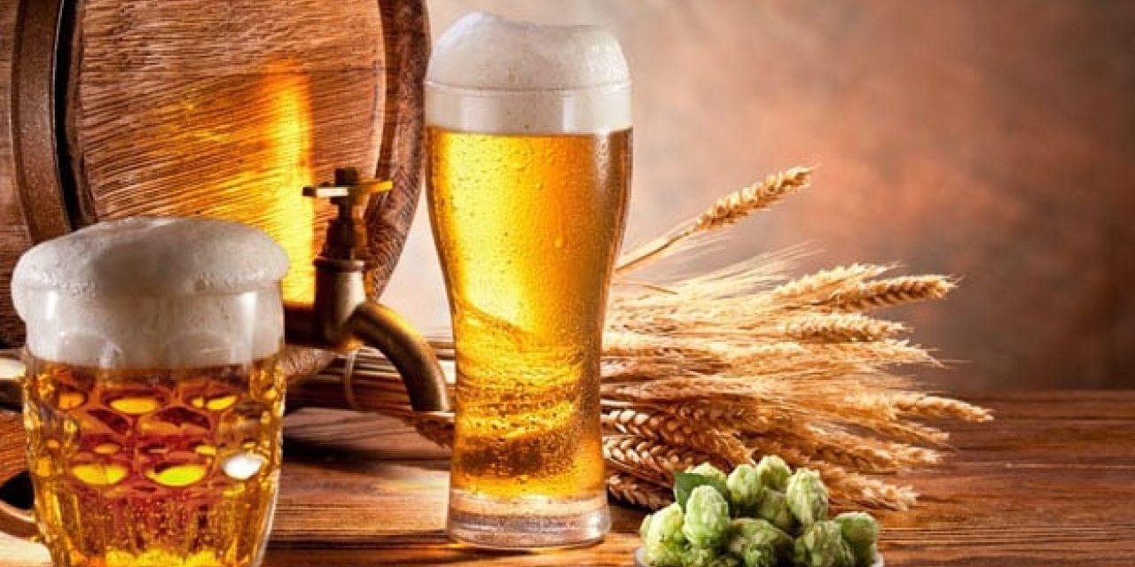 Ambev lança plataforma interativa de conhecimento cervejeiro