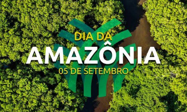 Dia da Amazônia: produtos de moda ecologicamente responsáveis