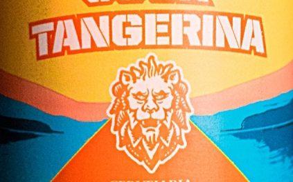 Berggren lança cerveja com tangerina para brindar chegada do verão