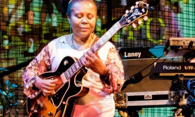 Instrumentista celebra 35 anos de carreira musical em série de lives