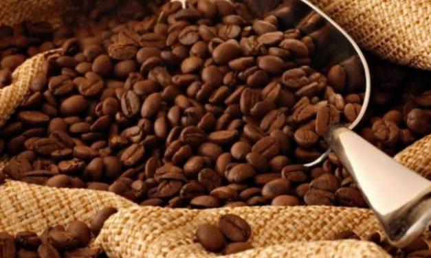No Dia Mundial do Café, saiba qual a relação da bebida com a Capital Federal